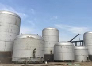 嶺南大型發酵工程在呼倫貝爾東北阜豐生物科技有限公司順利投產
